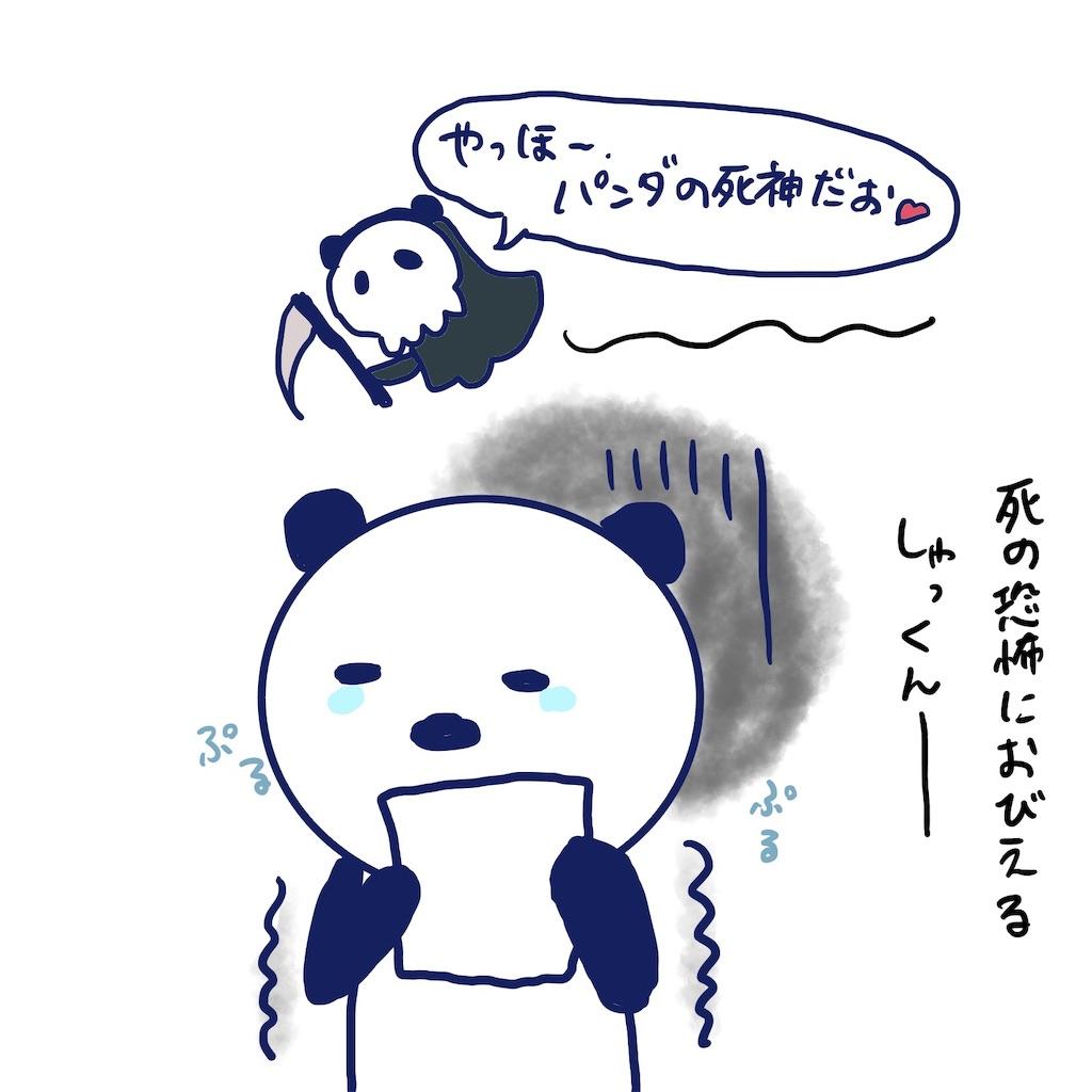 f:id:colo_shaku:20190408234742j:image