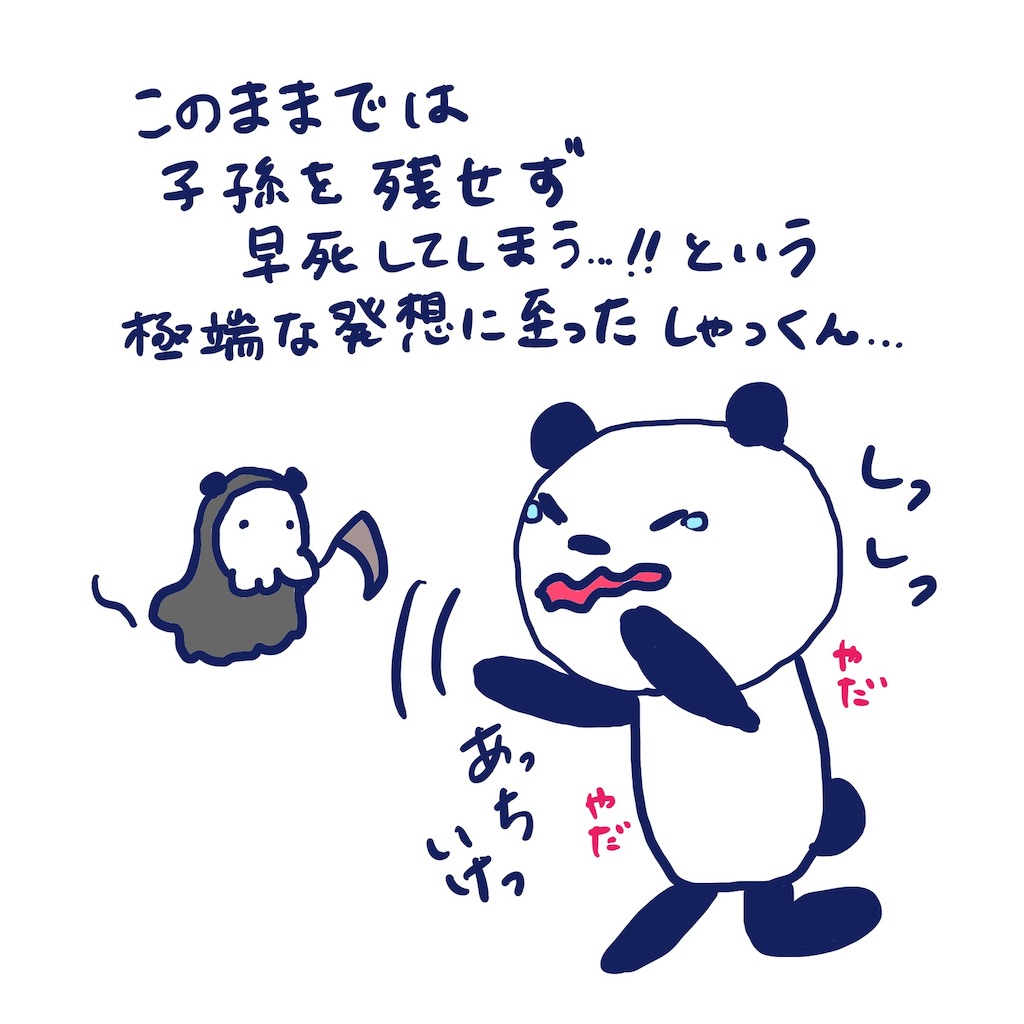 f:id:colo_shaku:20190408234747j:image