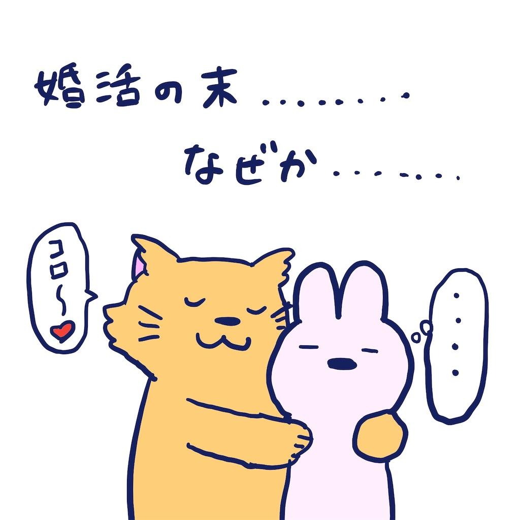 f:id:colo_shaku:20190410130336j:image