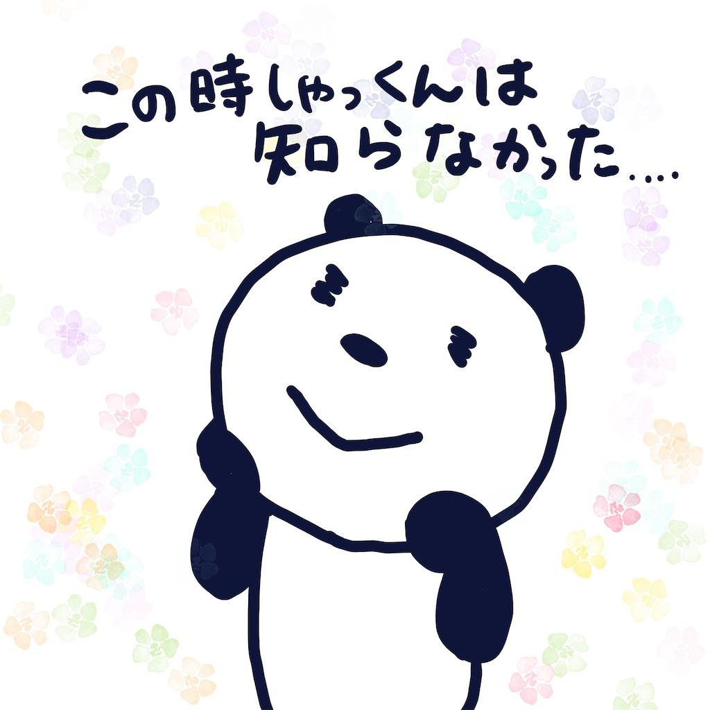 f:id:colo_shaku:20190414080625j:image