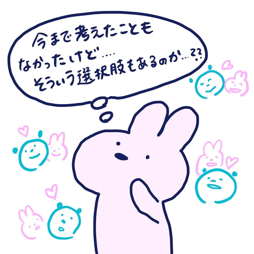 f:id:colo_shaku:20190417232616j:image