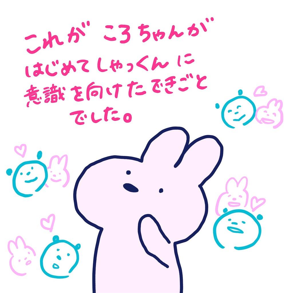 f:id:colo_shaku:20190418131129j:image