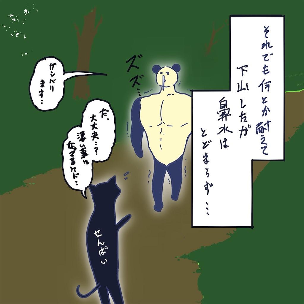 f:id:colo_shaku:20190425125520j:image