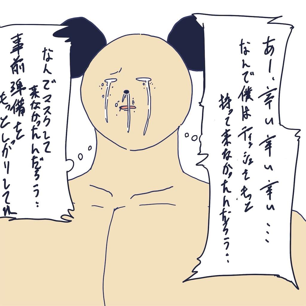 f:id:colo_shaku:20190425125533j:image