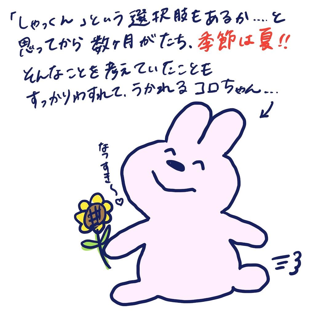 f:id:colo_shaku:20190426152125j:image