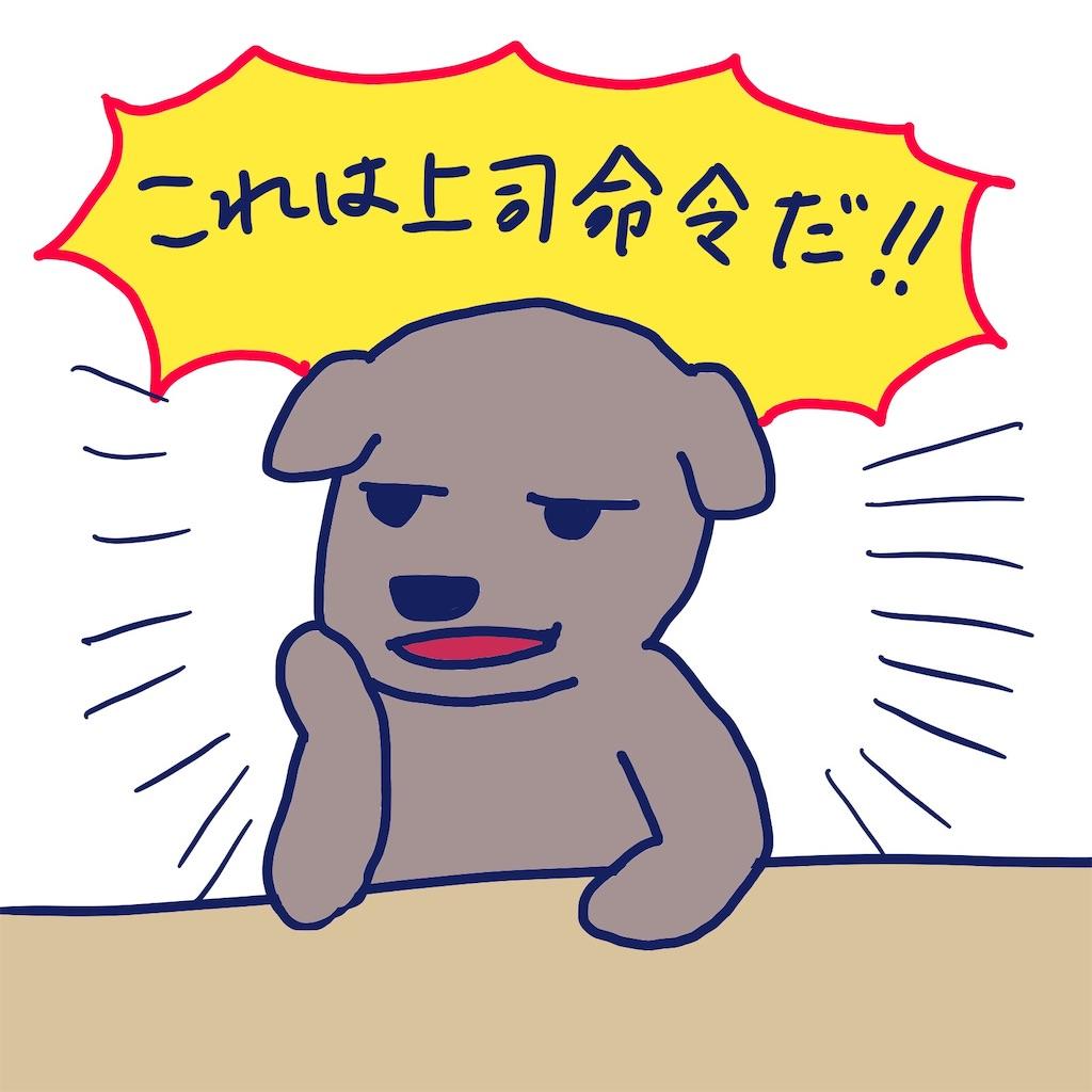 f:id:colo_shaku:20190426172723j:image