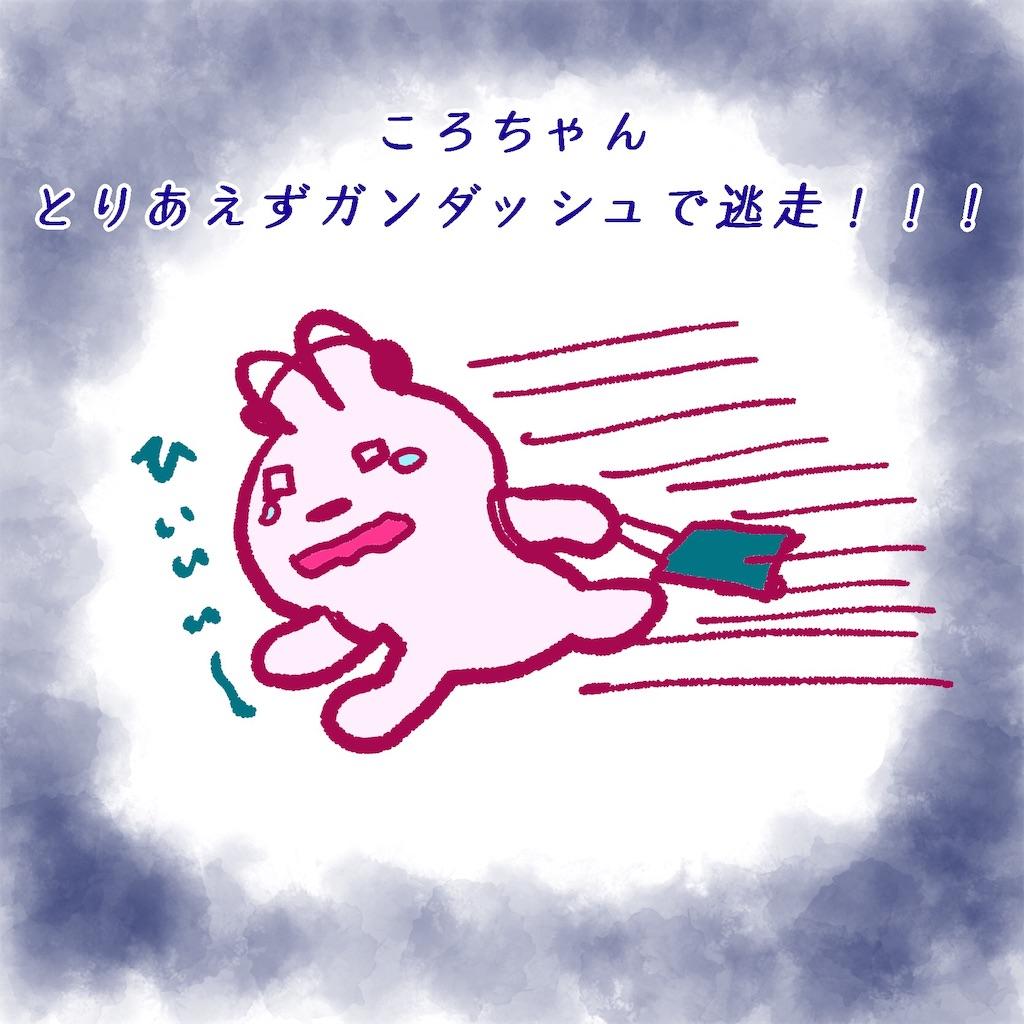 f:id:colo_shaku:20190426200946j:image