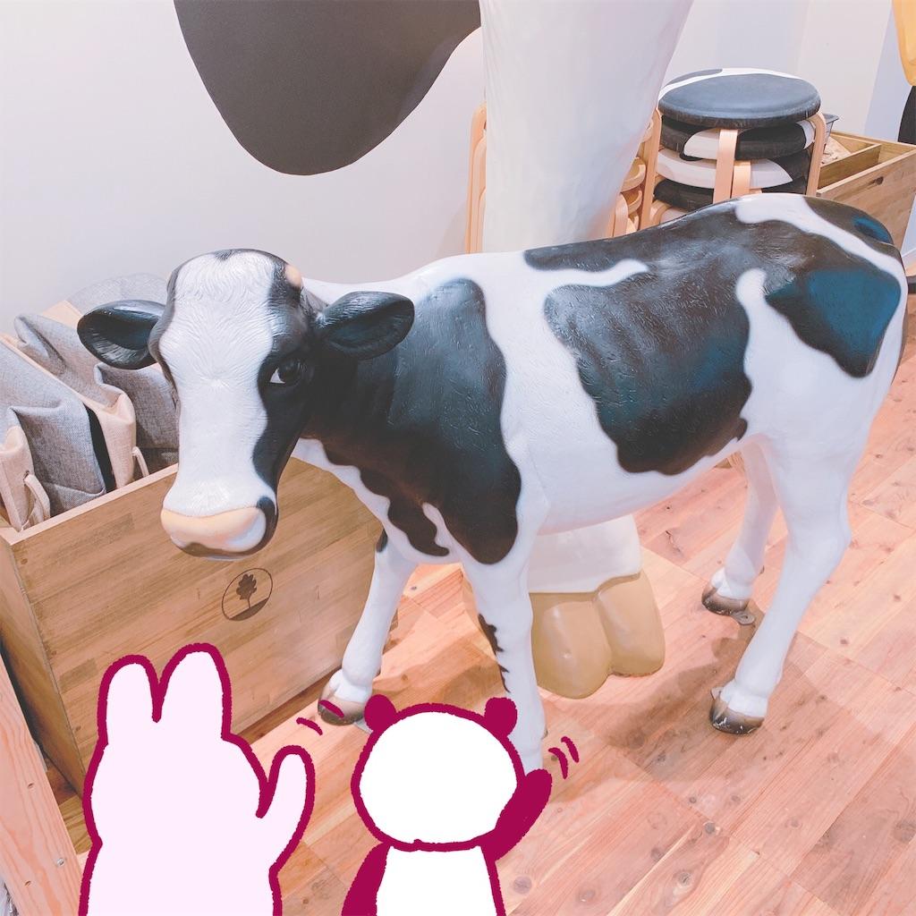 f:id:colo_shaku:20190528125328j:image
