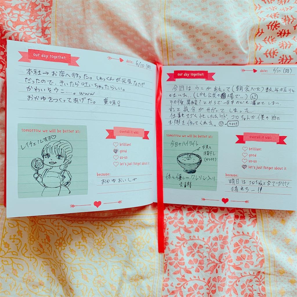 f:id:colo_shaku:20190613094803j:image