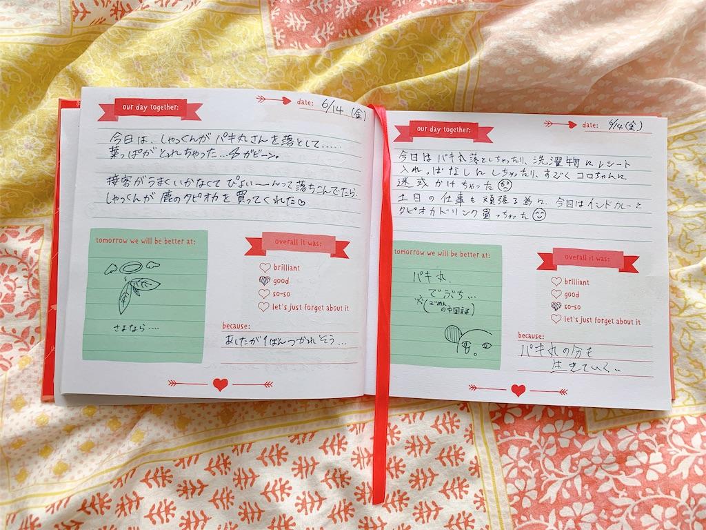 f:id:colo_shaku:20190616084003j:image