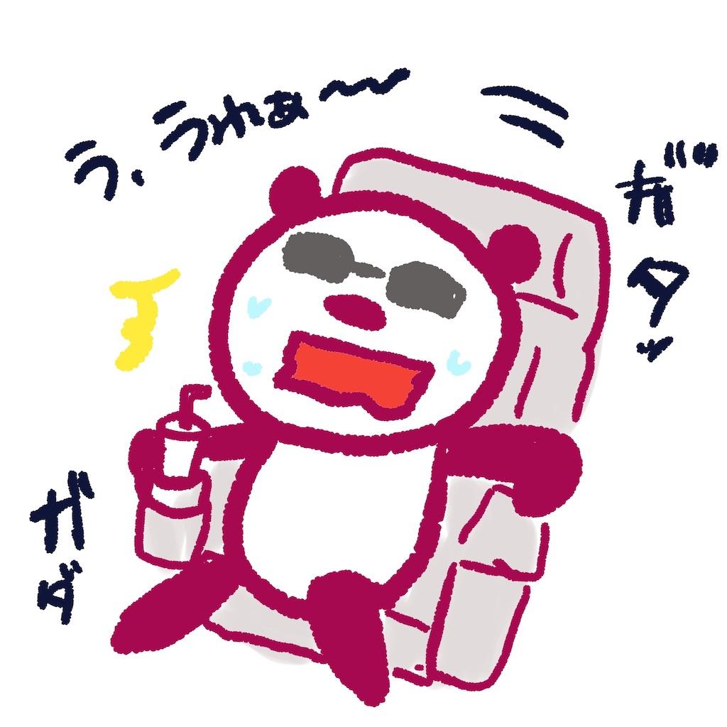 f:id:colo_shaku:20190719063713j:image