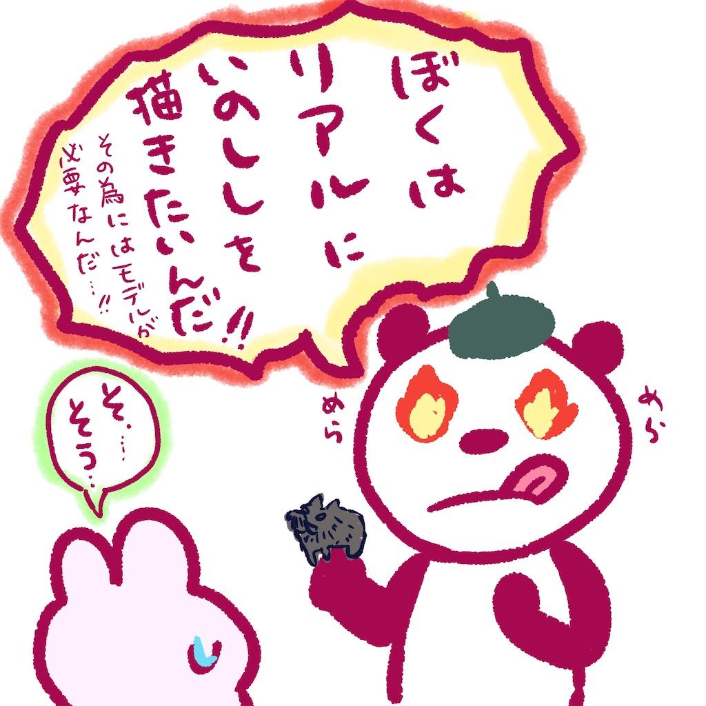 f:id:colo_shaku:20200110161924j:image