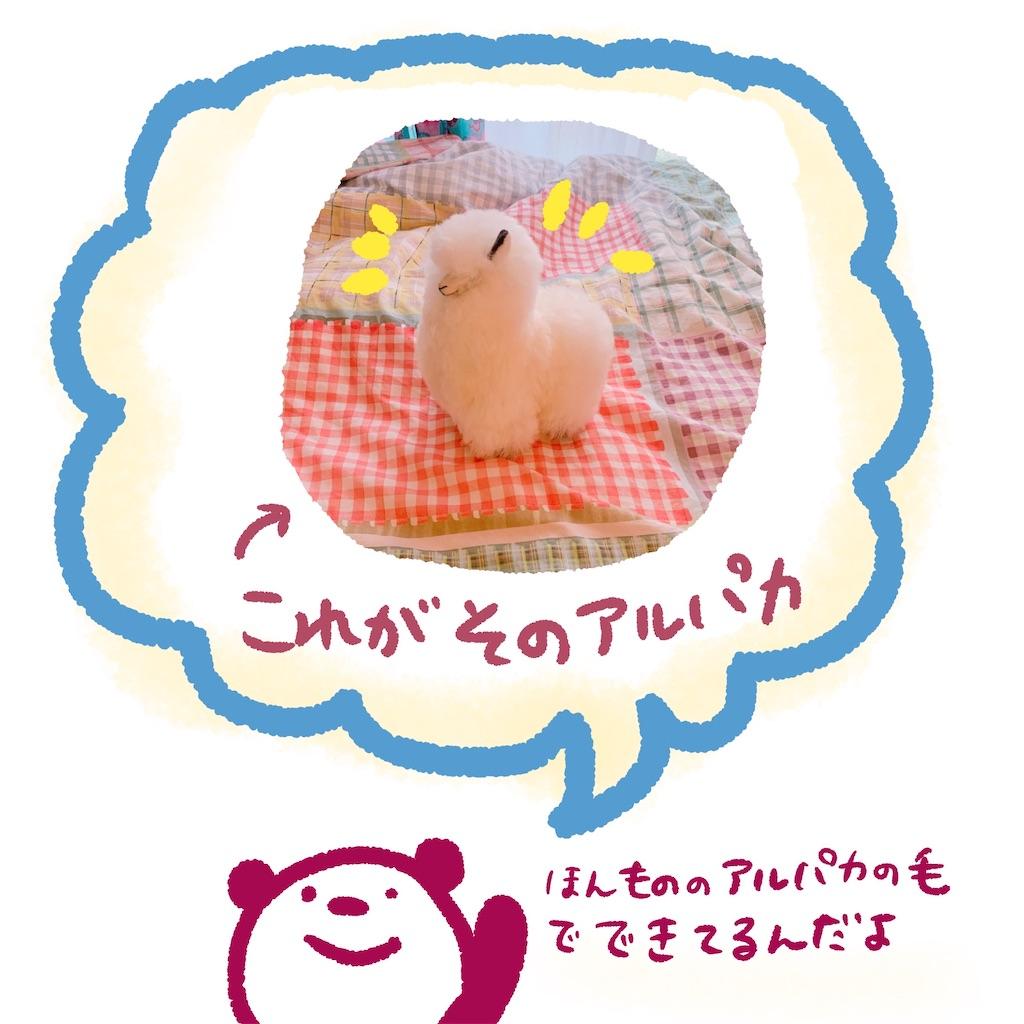 f:id:colo_shaku:20200111130022j:image
