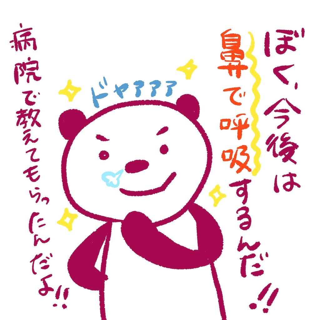f:id:colo_shaku:20200802122135j:image