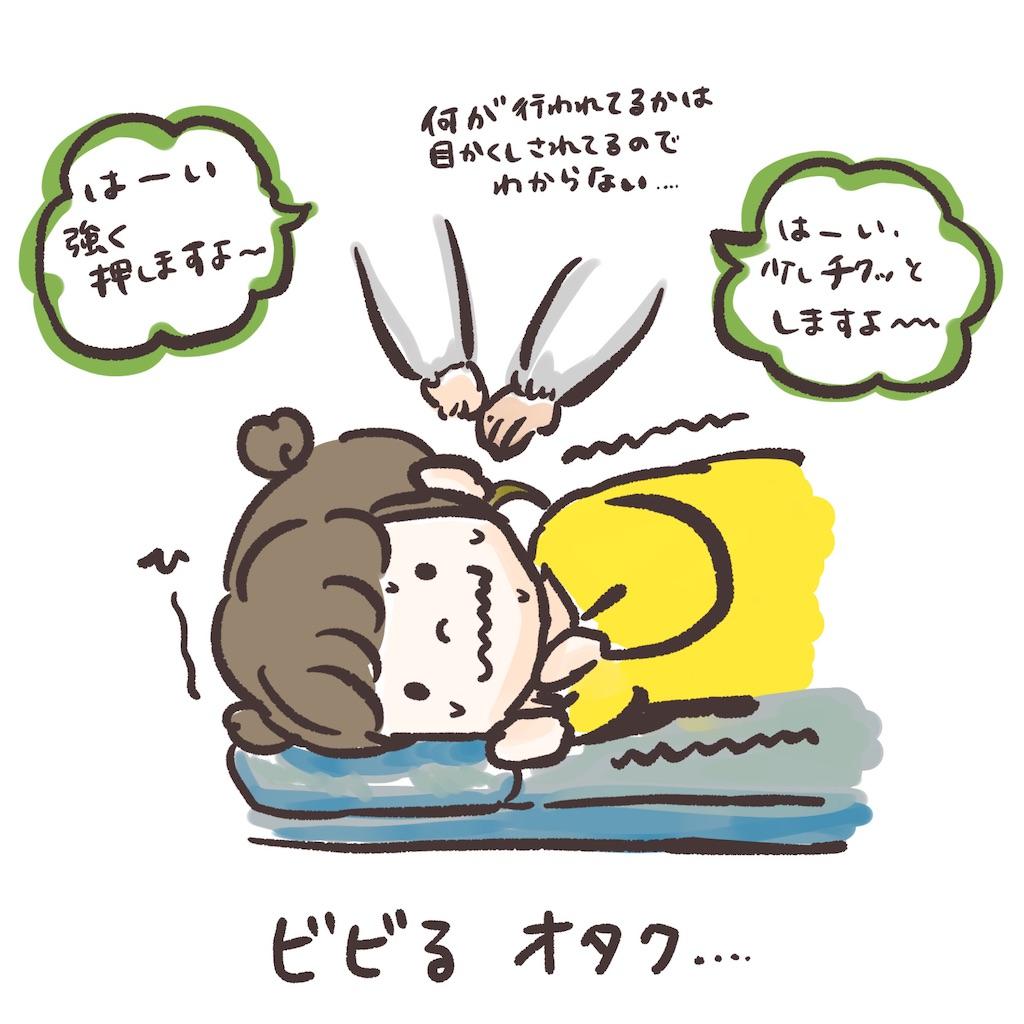 f:id:colo_shaku:20210113132142j:image