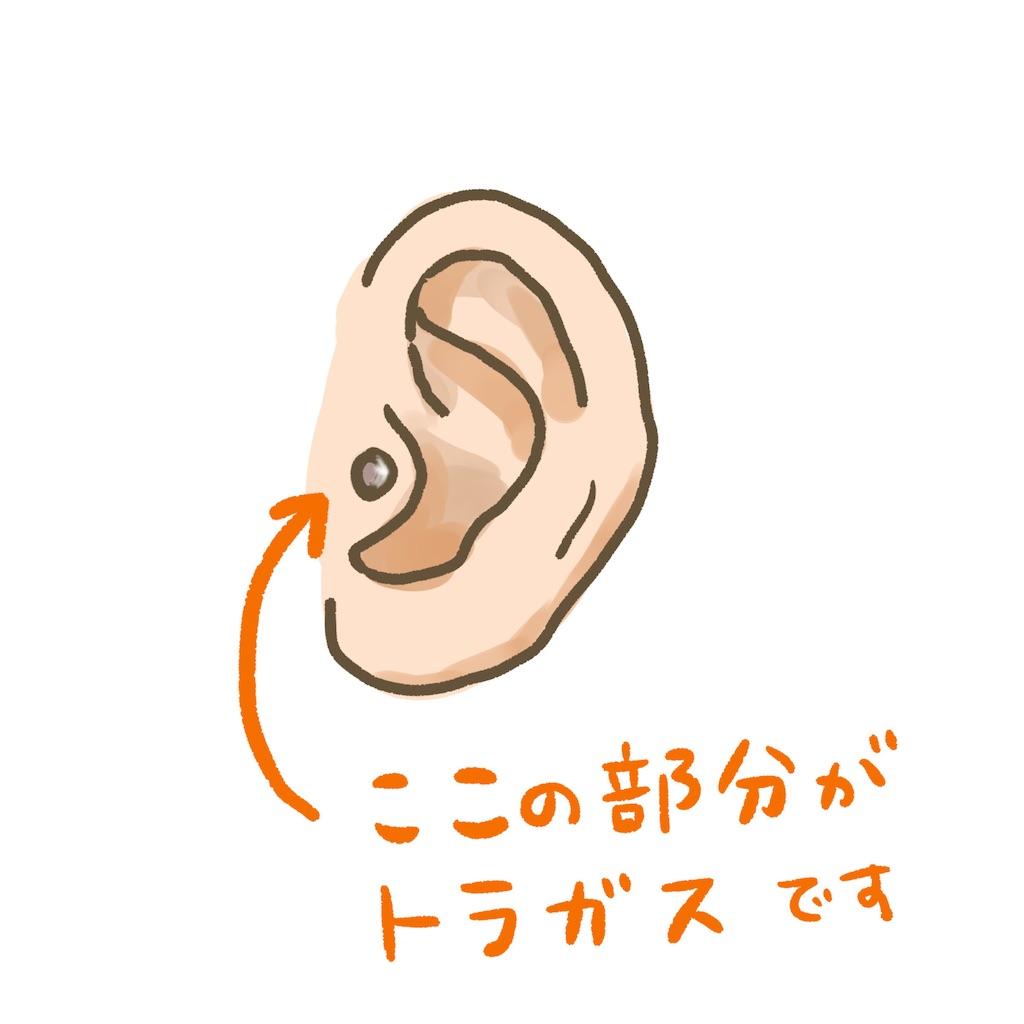 f:id:colo_shaku:20210113152000j:image