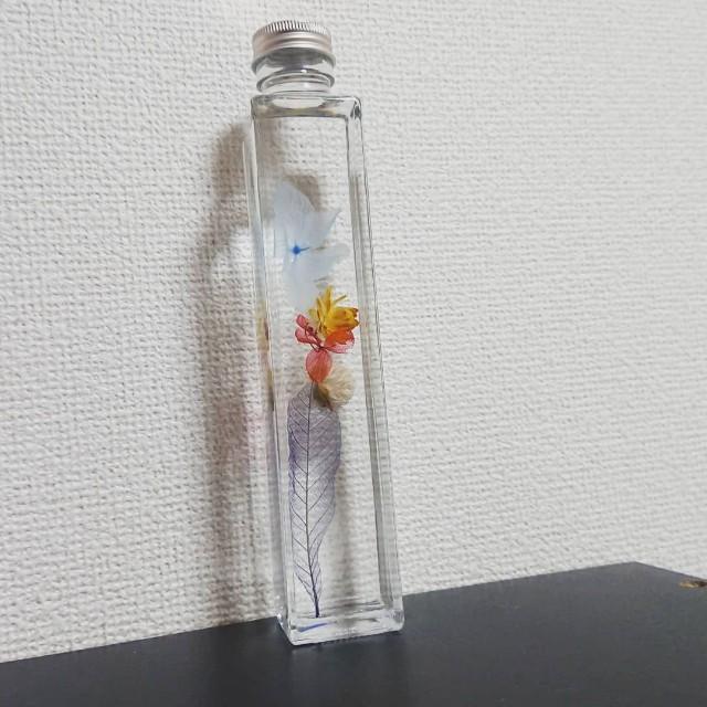 f:id:color-full-kei:20181010000610j:image