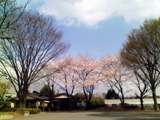 f:id:color-hiyoko:20100403130939j:plain