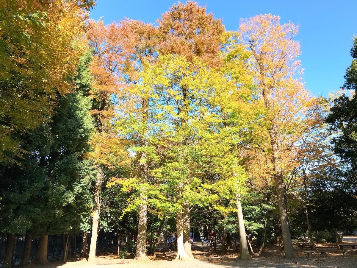 f:id:color-hiyoko:20191201194404j:plain