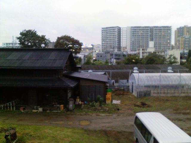 f:id:color-hiyoko:20200305112302j:plain