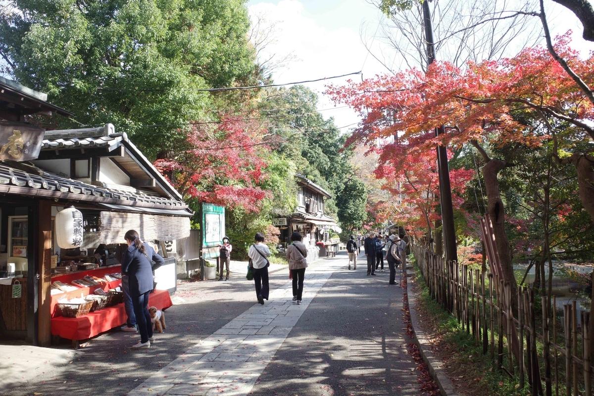 f:id:color-hiyoko:20201120111606j:plain