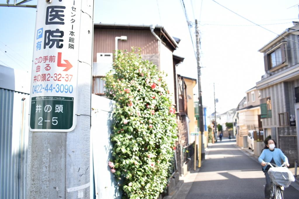 f:id:color-hiyoko:20210329211957j:plain