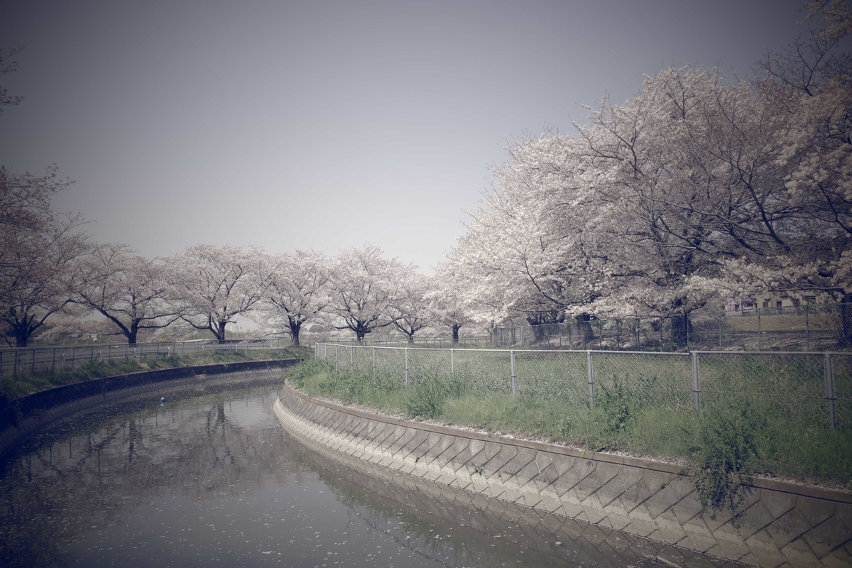f:id:color-hiyoko:20210331215934j:plain