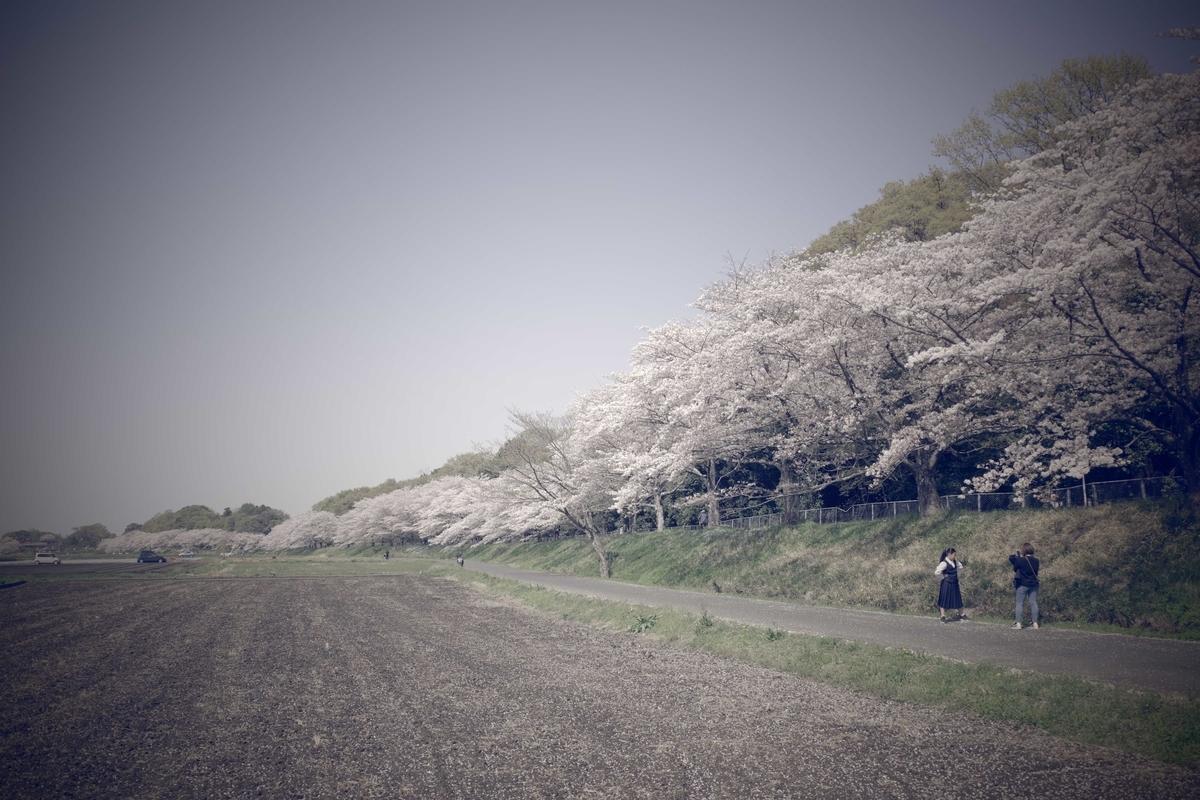 f:id:color-hiyoko:20210331220042j:plain