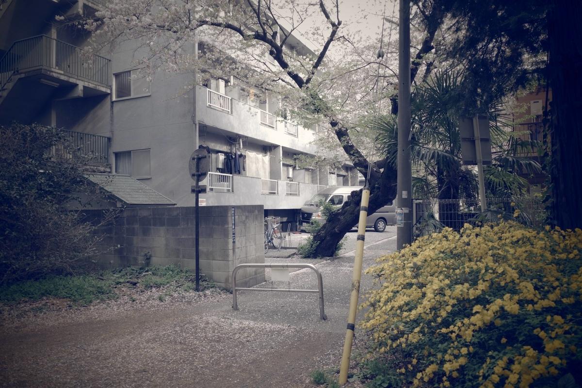 f:id:color-hiyoko:20210402205227j:plain