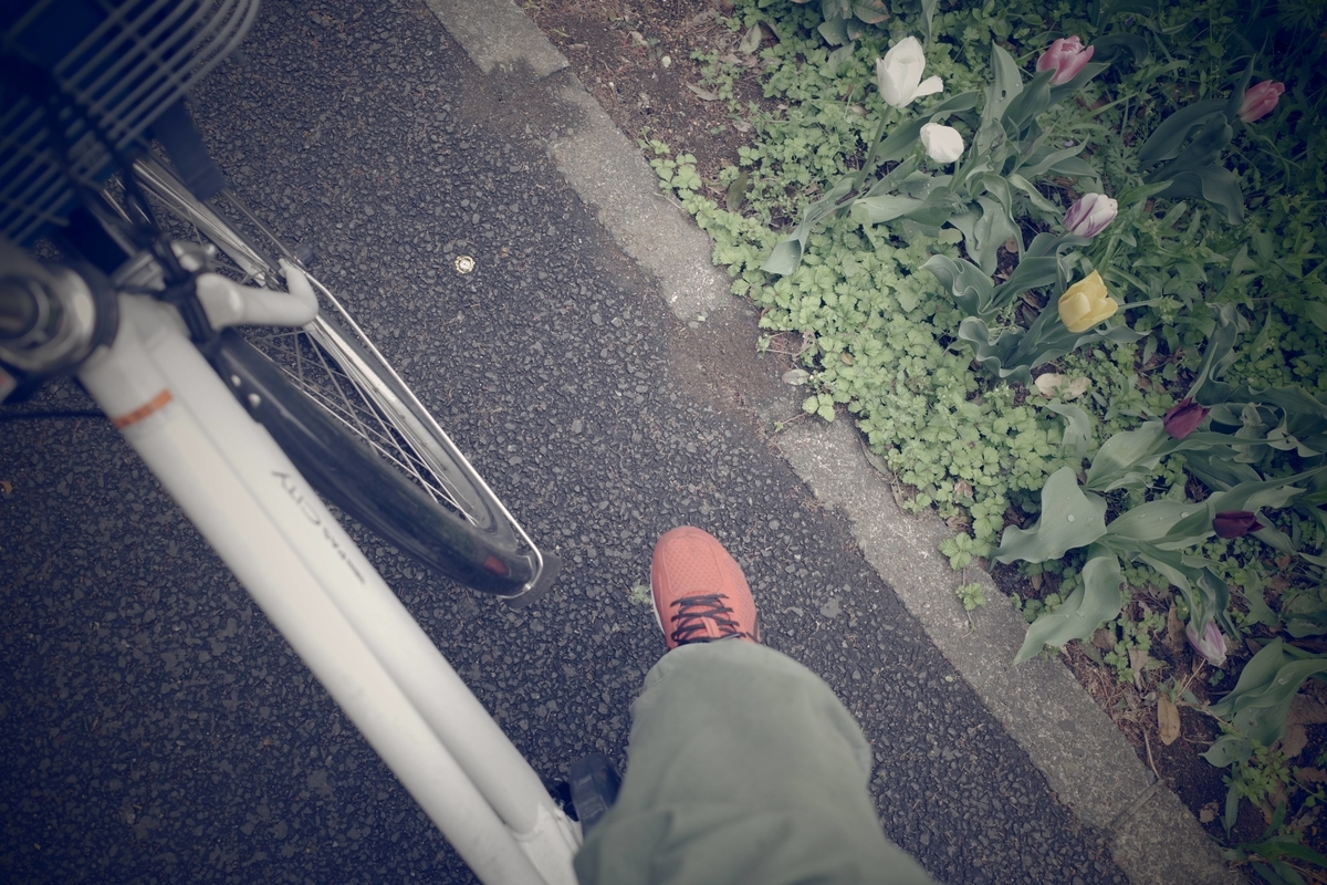 f:id:color-hiyoko:20210406002052j:plain