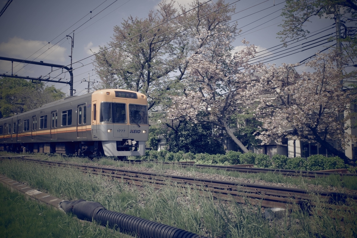 f:id:color-hiyoko:20210411203525j:plain
