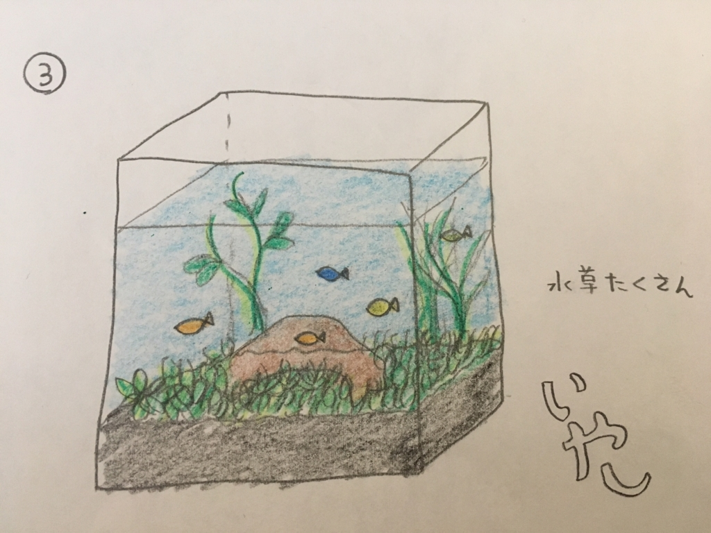 f:id:color_aquarium:20170628140555j:plain