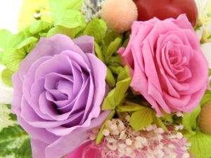 f:id:colorbless:20150227144156j:image
