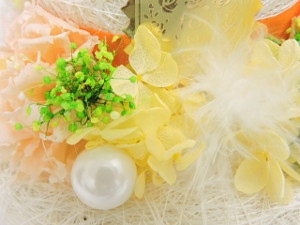 f:id:colorbless:20151020032132j:image
