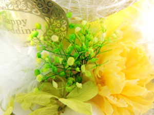 f:id:colorbless:20151022210131j:image