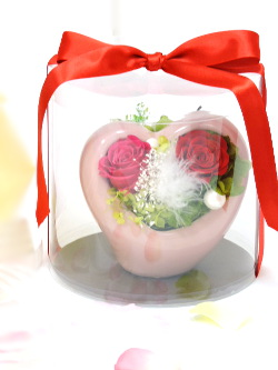 f:id:colorbless:20151025175115j:image