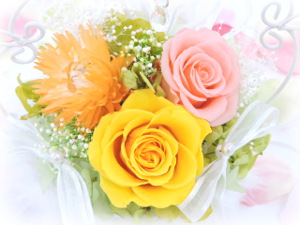 f:id:colorbless:20160325005020j:image