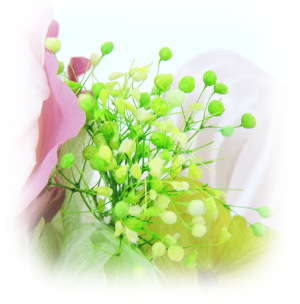 f:id:colorbless:20160326230758j:image
