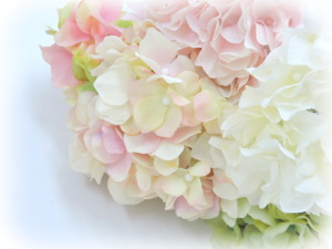 f:id:colorbless:20160606231710j:image