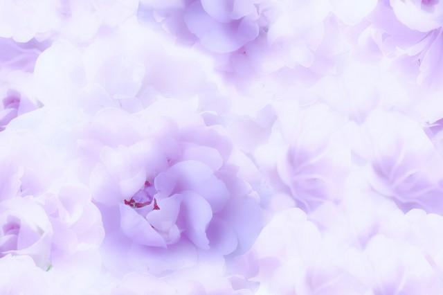 f:id:colorbluebase:20180825111843j:image