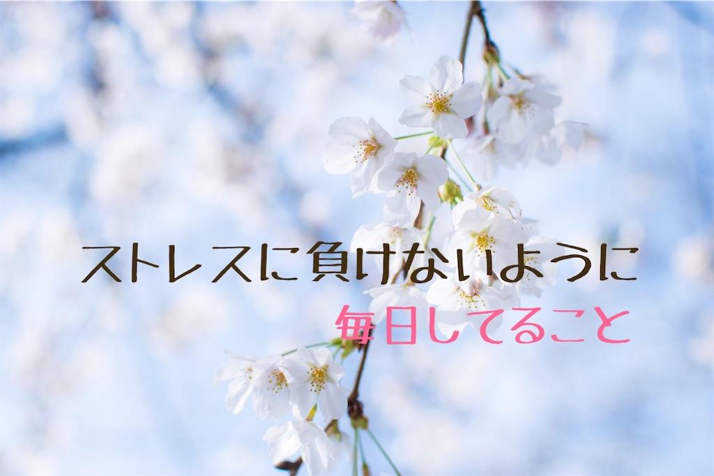 f:id:comeko:20190301175330j:image
