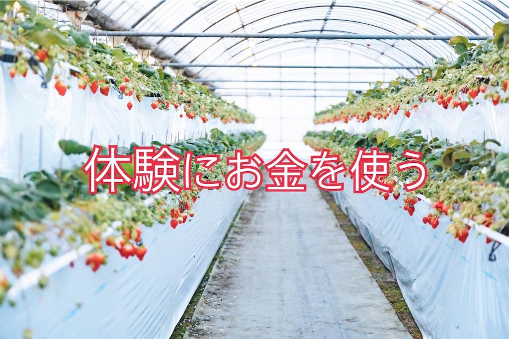 f:id:comeko:20190307152307j:image