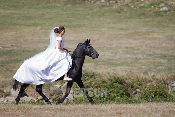 mariée sur le cheval