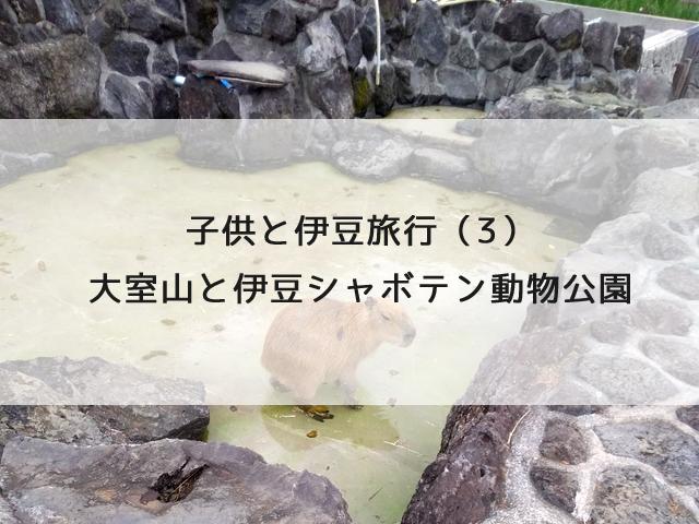 子供と伊豆旅行(3)大室山と伊豆シャボテン動物公園