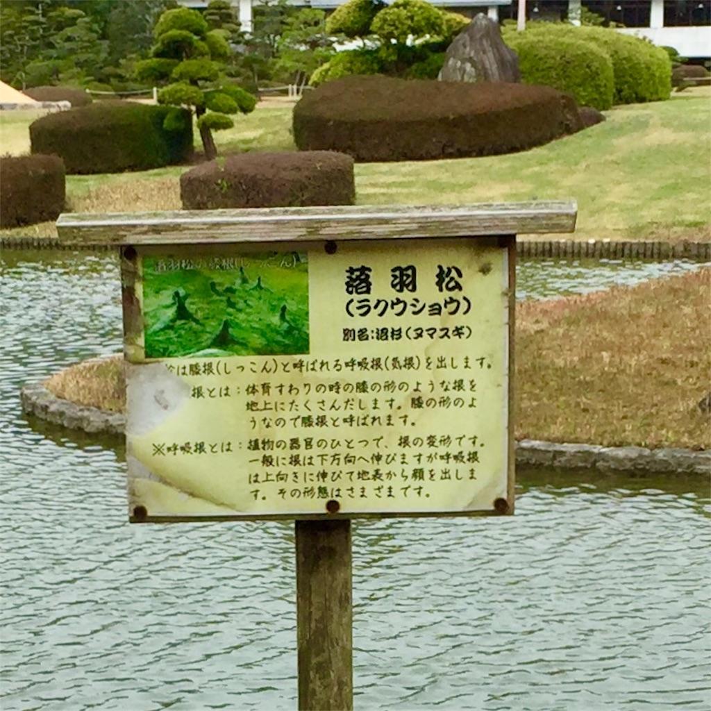 f:id:conakichi:20200322154040j:image