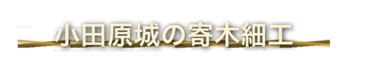 f:id:conasaji:20200607173911p:plain