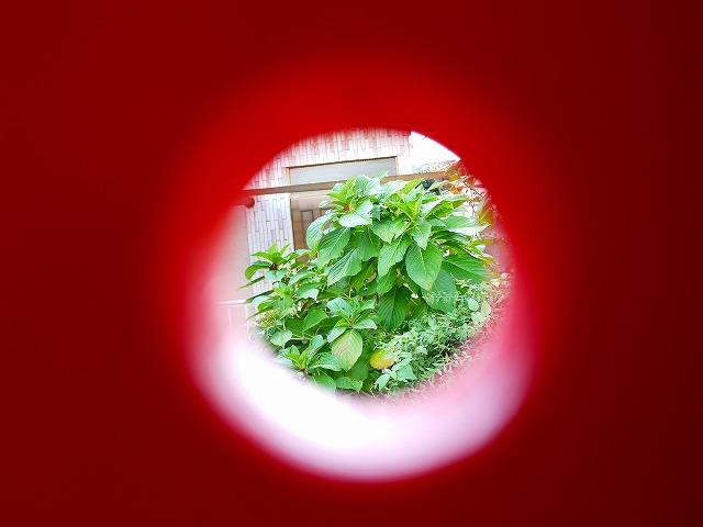 f:id:congiro:20141025231105j:image