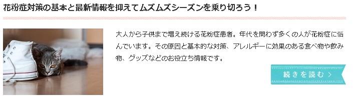 f:id:coni-coni:20170207095858j:plain
