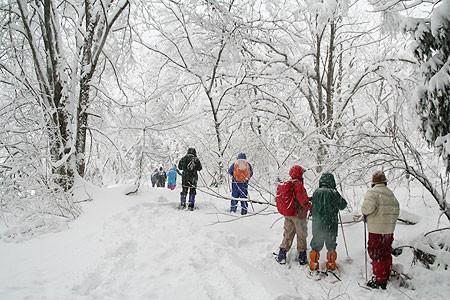 スノーシュー散策