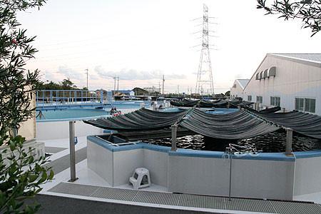 浜岡原発の温排水を使った養殖研究施設